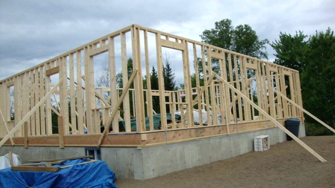 budget build backyard cabin