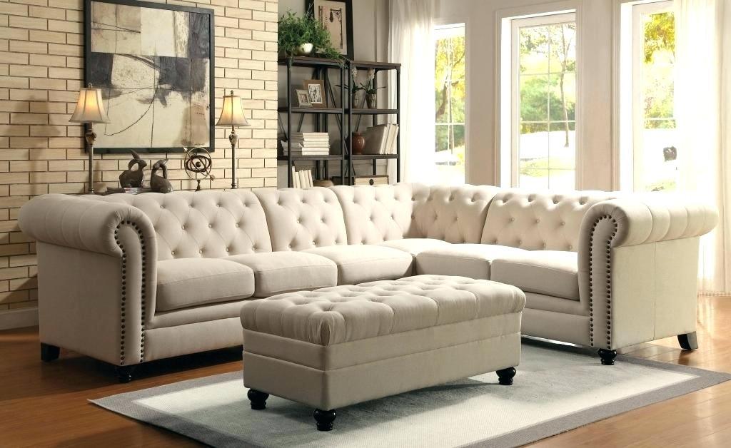 extra long special sofa bed sofa ideas