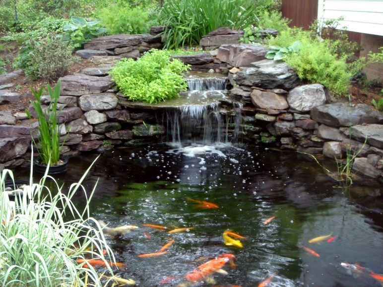 simple waterfall and fish pond