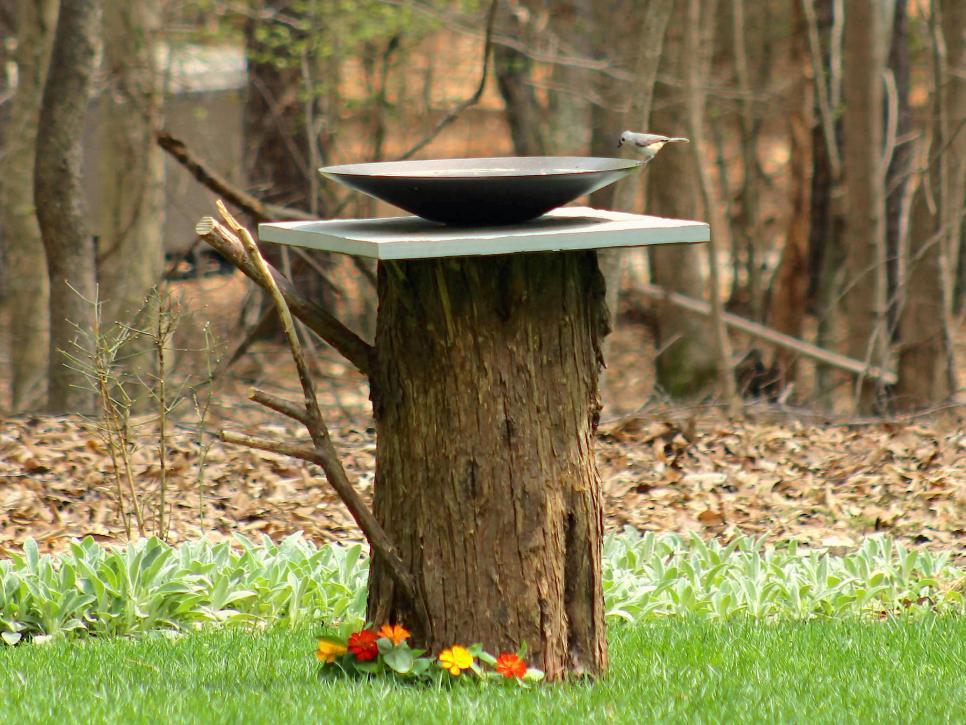 tree stump for stunning bird bath garden design ideas