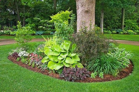 beautiful landscaping ideas around trees