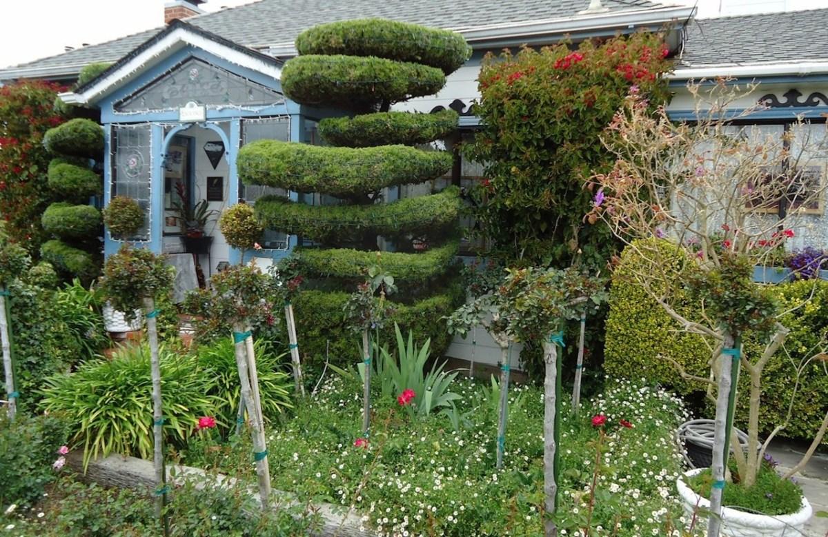 beautiful garden with landscaping ideas hillside