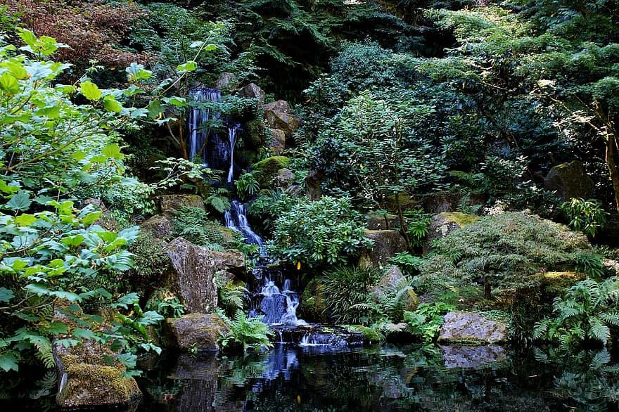 stream waterfall zen landscape creek outdoor scenery flow tranquil