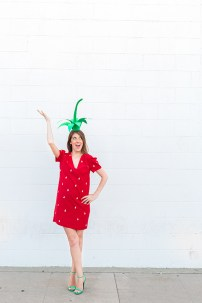 DIY-Strawbery-Costume21
