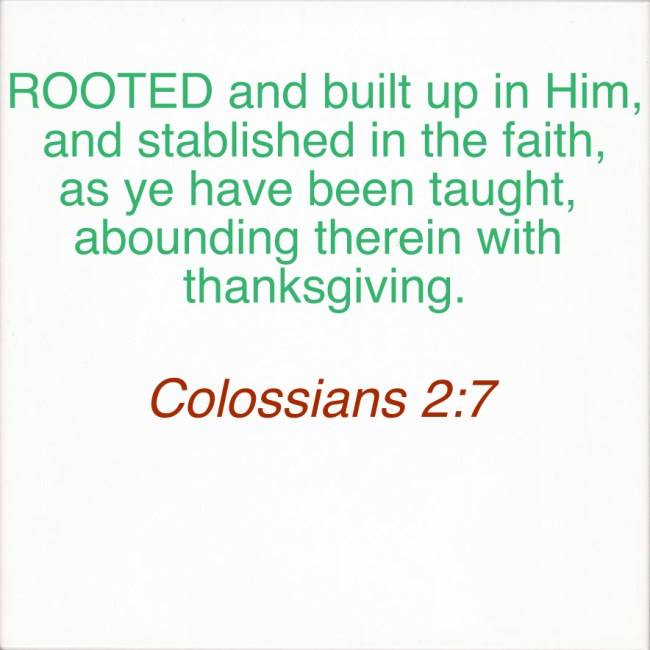 ROOTED AND GROUNDED IN HIM