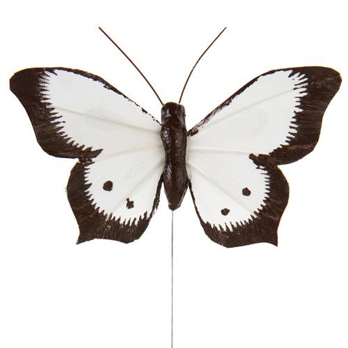 Papillon en plume bicolore blanc