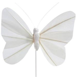Papillon en plume blanche