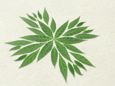 Medical cannabis logo by Jan Zabransky