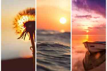 Quotes About Sunset And Love Inspirationfeed