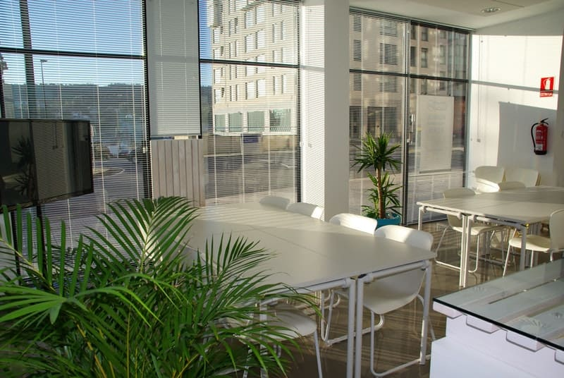 Modern office letting in morning sunshine