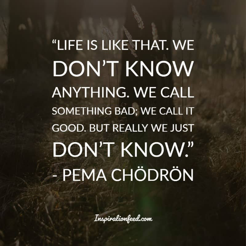 Pema Chodron Quotes