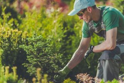 Preparing For Summer: Ways To Ready Your Garden For Warmer Months