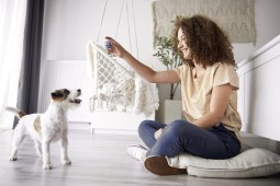 Where to Find the Best Flooring for Dogs
