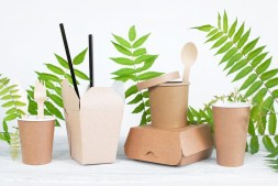Making Earth-Friendly Purchases 5 Products That are Changing the World
