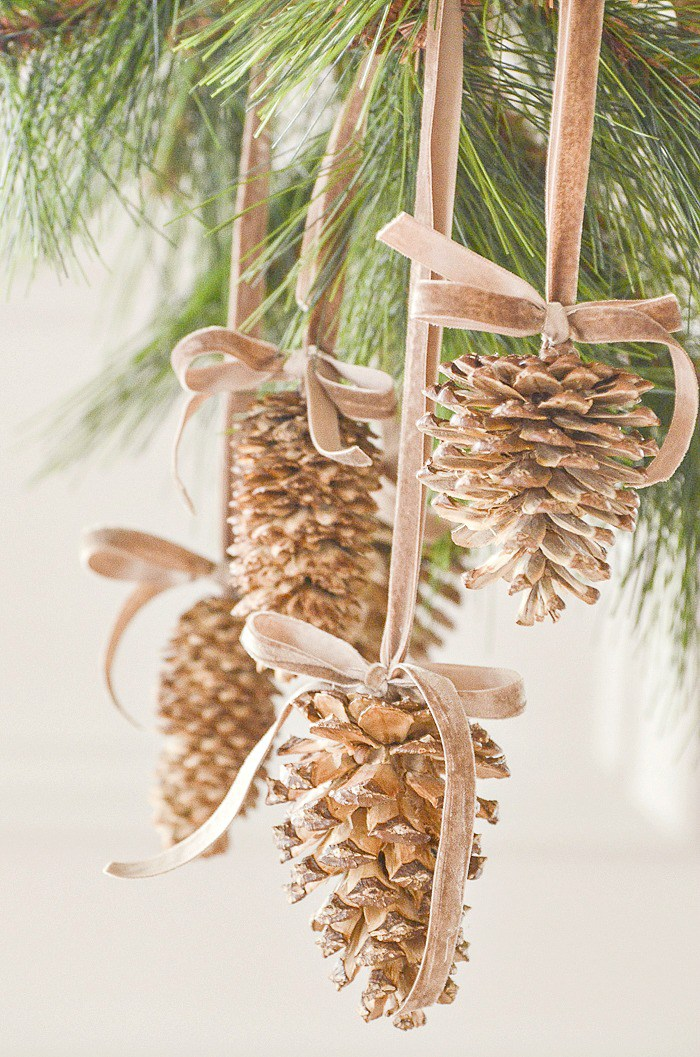 DIY Bleached Pinecones
