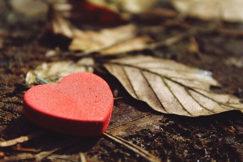 une boîte en forme de coeur posée au sol, recouvert de feuilles
