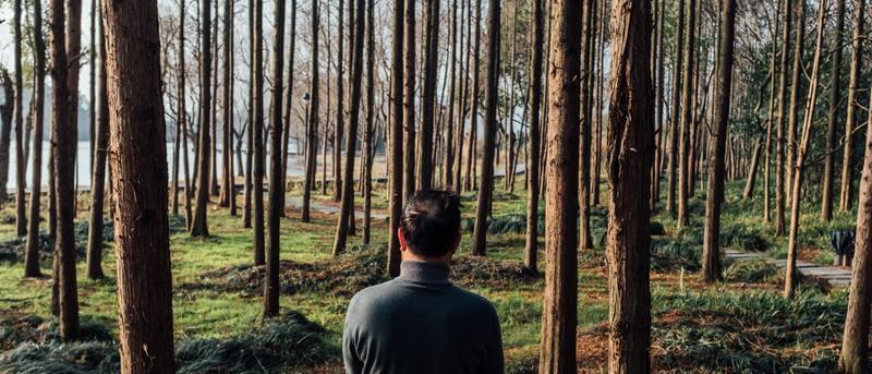homme de dos avançant dans une forêt
