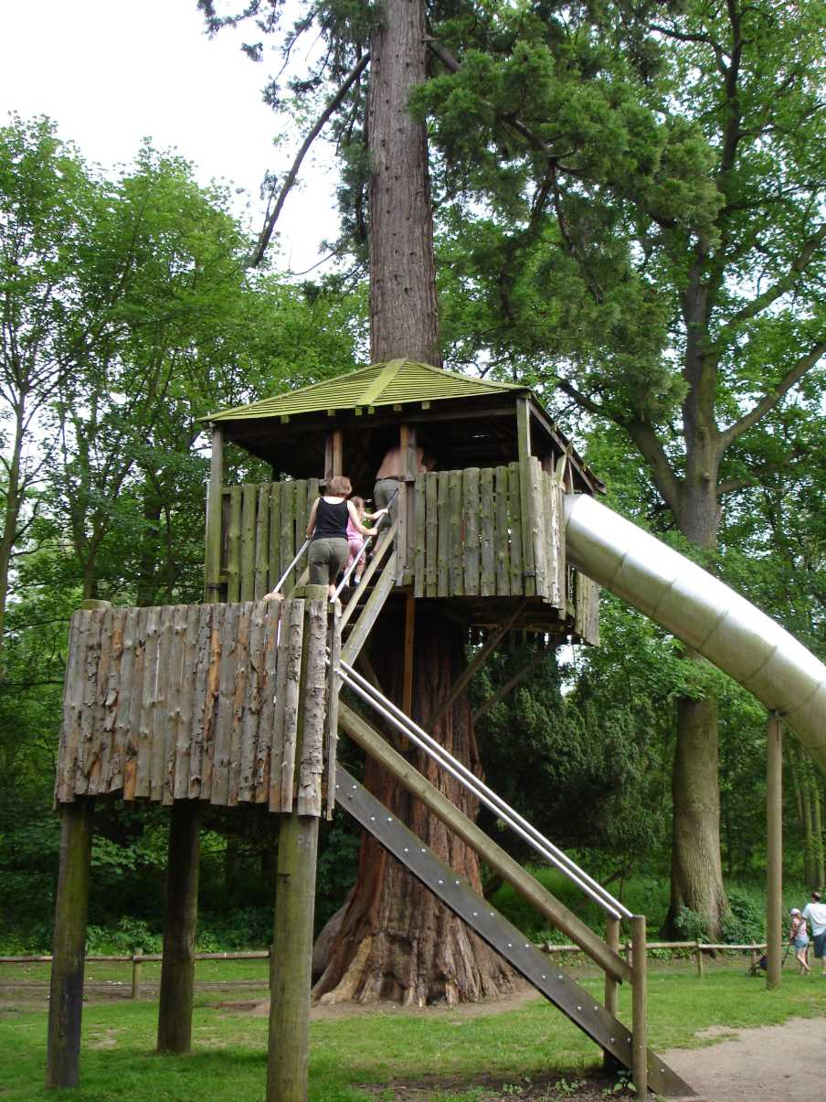 Tree House Design Ideas For Modern Family