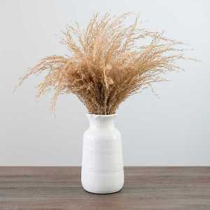 Pampas Grass in a Vase