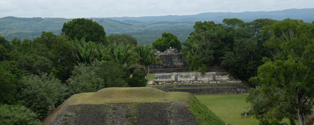 Discovering the Mayans