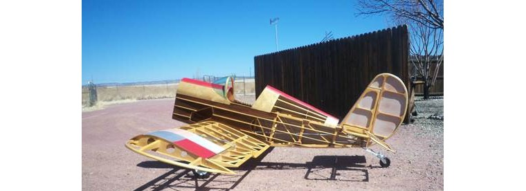 What Our Members are Building/Restoring — Tennessee Aeronca