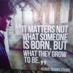 Quote Of The Day: It Matters Not What Someone Is Born, But What They Grow To Be
