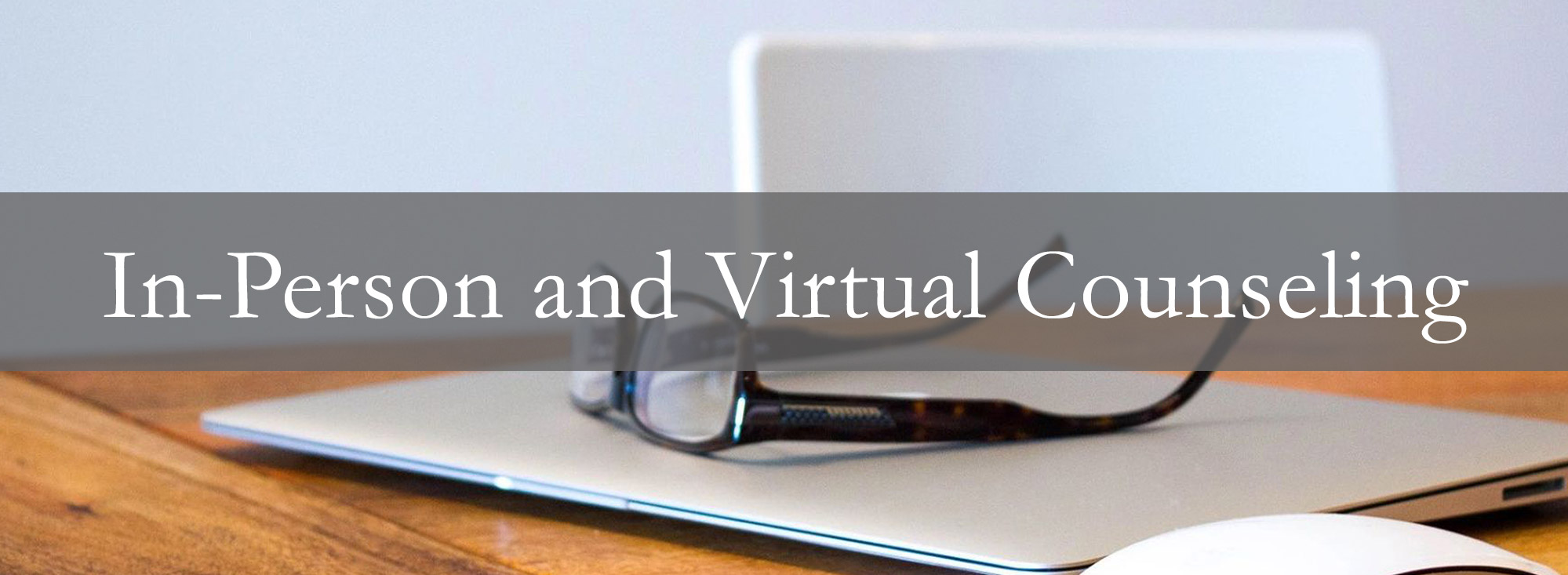 In Person and Virtual Counseling