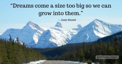 josie bissett quotes