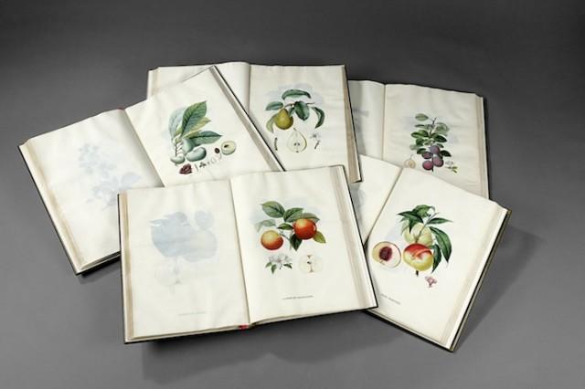Трактат про плодові дерева