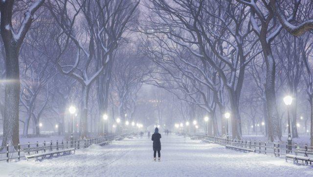 blizzard2015-quintano-central-park