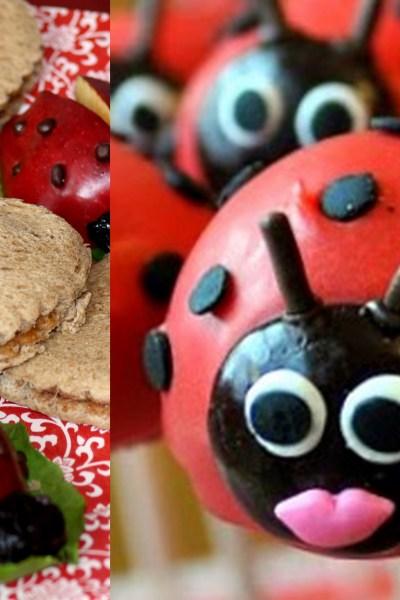 Ladybug Party