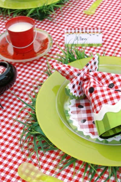 Picnic Parade Party: DIY Watermelon Napkins