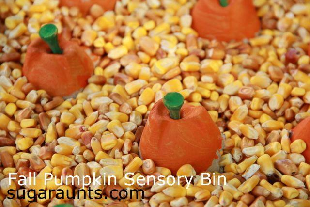 fall pumpkin sensory bin