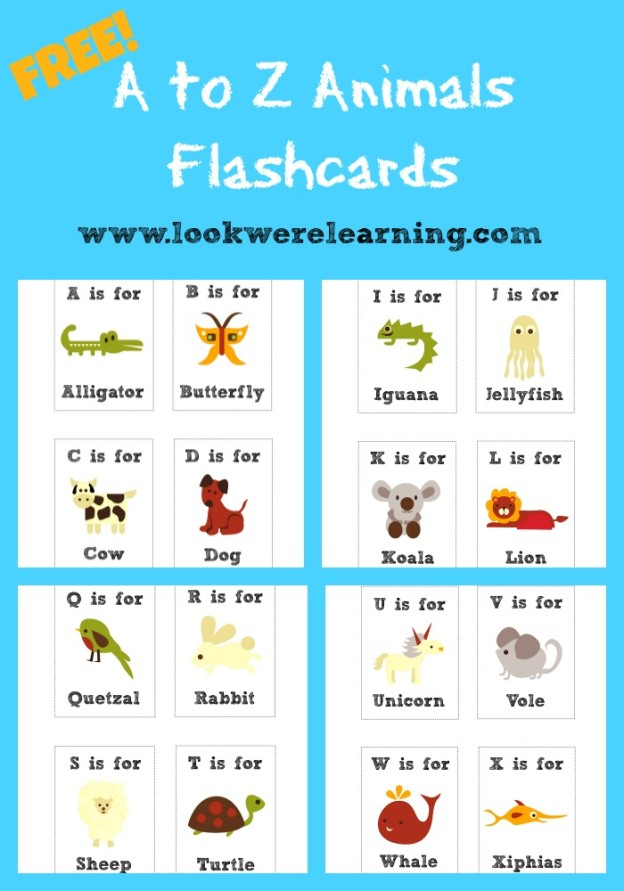 picture relating to Printable Spanish Alphabet Chart named ABCs 123 Printables and Much more Spanish English