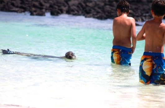 galapagos ecuador with kids
