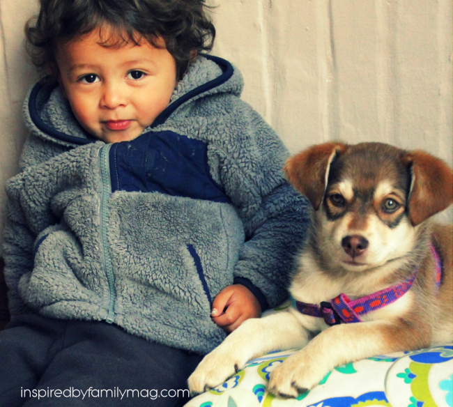 mateo and milly