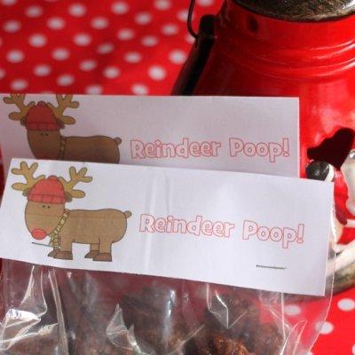 Healthy Christmas Snack: Reindeer Poop