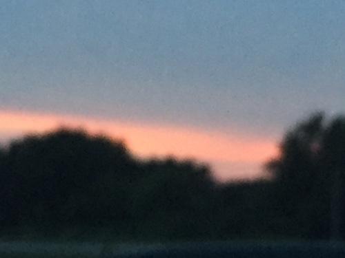 fuzzy-sunset
