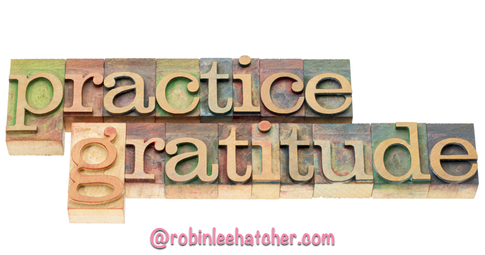 Gratitude Documented Challenge
