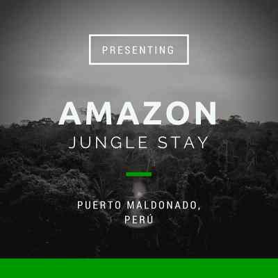 Amazon Jungle Stay