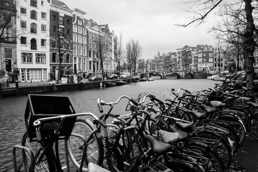 Try A Free Walking Tour Next Time You Explore The World! Amsterdam Free Walking Tour