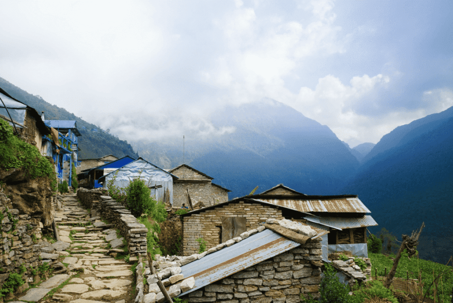poon hill trek 4 days Tea House Trekking in Nepal