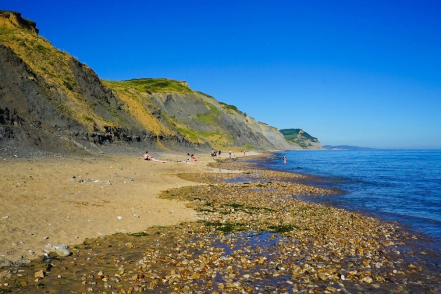 Things to do in Jurassic Coast - things to do in Devon - East Devon Coast