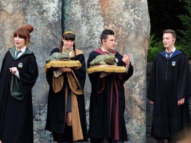 Hogwarts Choir Performance