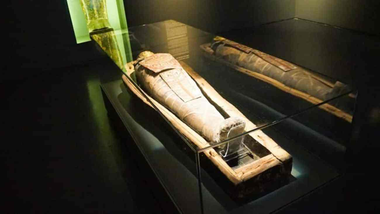 Israel Museum Highlights