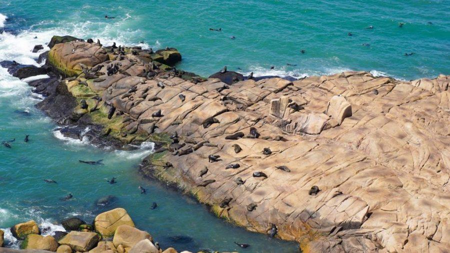 Cabo Polonio Travel Guide