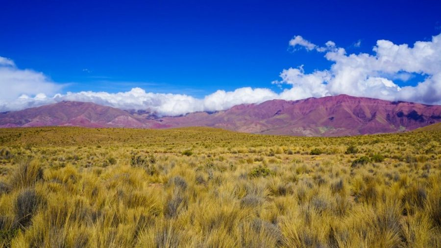 The Impossible Fourteen Coloured Mountain in Northern Argentina