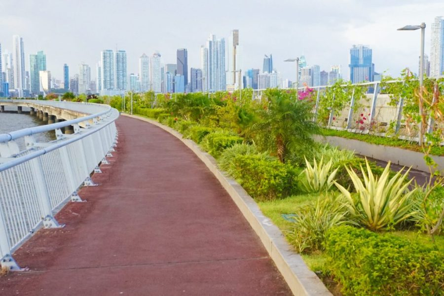 Cinta Costera - 12 Unmissable Things to Do in Panama City!