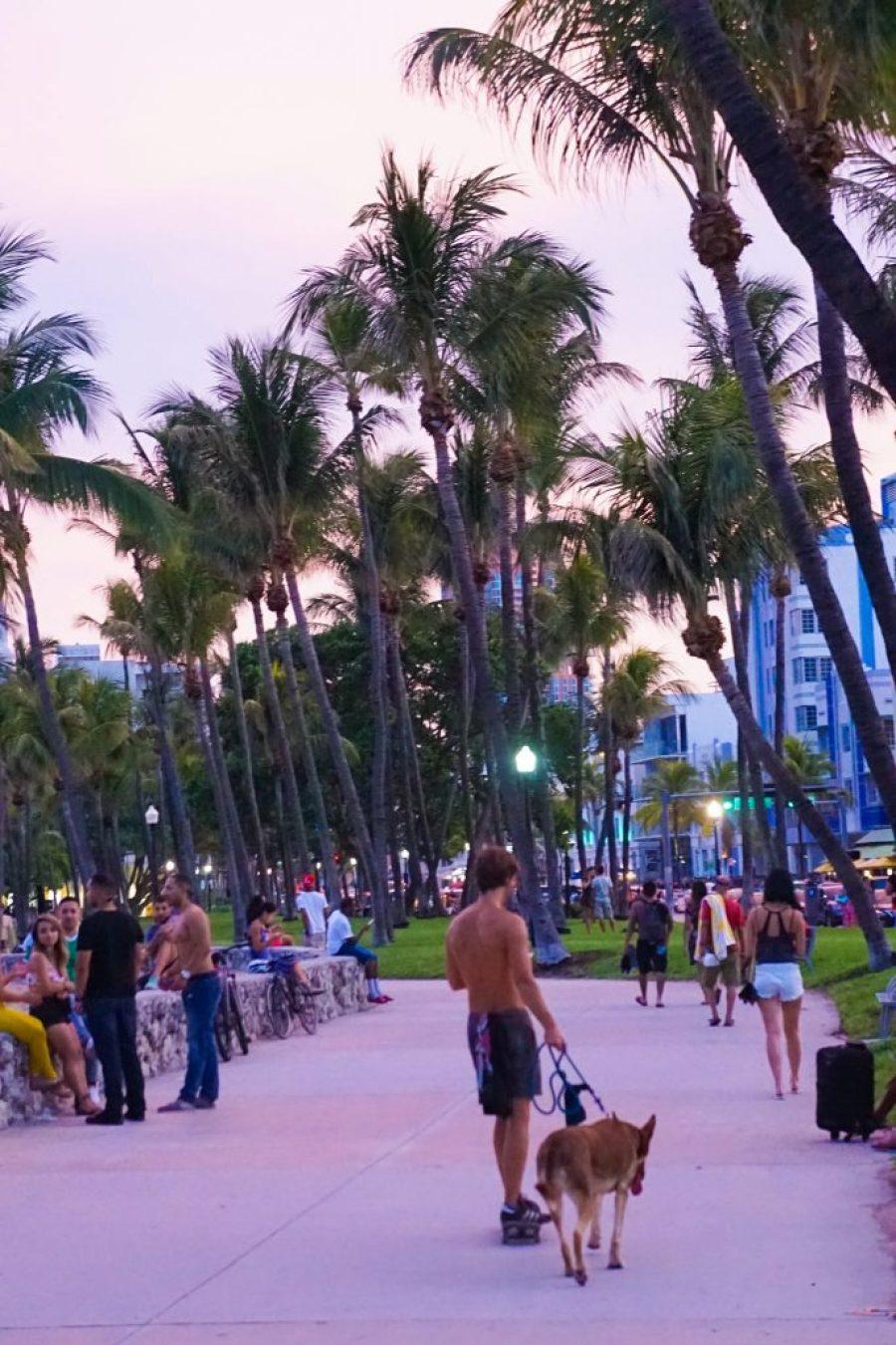 SoBe Beach Hostel & Bar - South Beach On The Cheap