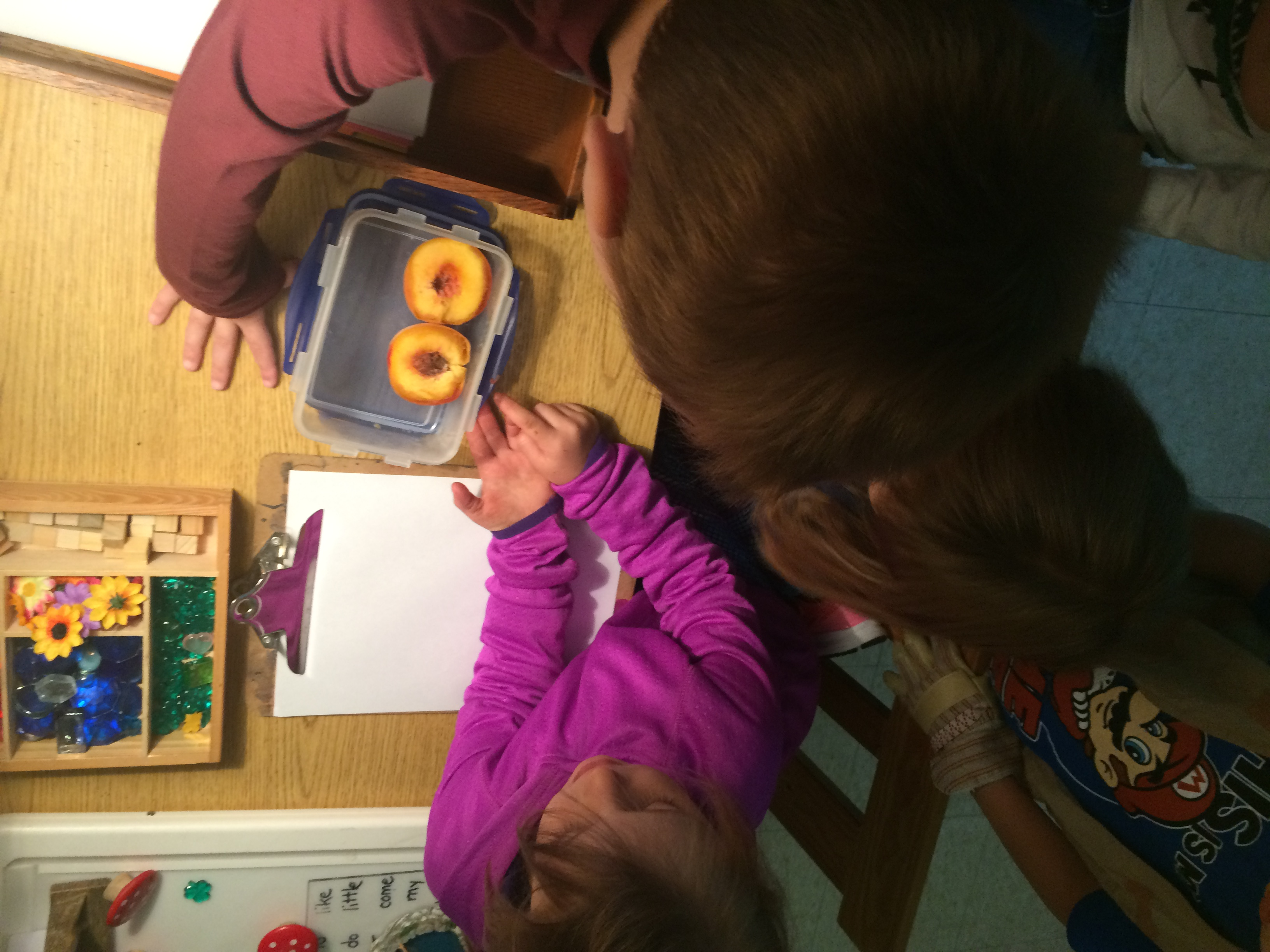 James And The Giant Wormy Peach A Kinderland Inquiry Inspired By Play